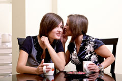 Two cheerful girls. Stock Photography