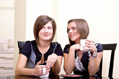 Two cheerful girls. Royalty Free Stock Images