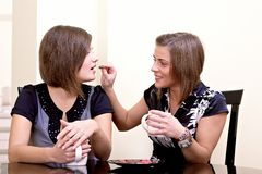 Two cheerful girls. Stock Photos