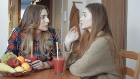 Two cheerful girls drinking smoothie and gossiping. Two beautiful young girl having conversation at home. Relaxing time of two pretty friends stock footage