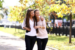 Two cheerful girls twins Royalty Free Stock Photo