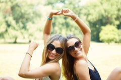 Two cheerful girls twins Royalty Free Stock Image