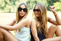 Two cheerful girls twins. In the park Stock Image