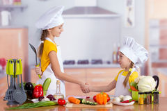 Two cheerful little chefs shake hands Stock Photography