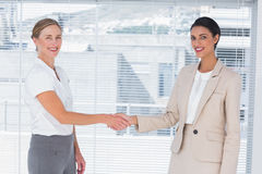 Two cheerful partners shaking hands Stock Photography