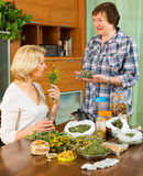 Two cheerful pensioner with  herbs Royalty Free Stock Photos