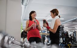 Two senior women in gym resting after doing exercise, holding water bottles. stock photography