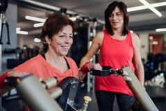 Two cheerful seniors women in gym doing strength workout exercise. Two cheerful seniors women friends in gym doing strength workout exercise royalty free stock photography