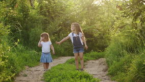 Two cheerful sisters walk in park. Two cheerful sisters. Cute girls walking in the park hand in hand. Family values stock video footage