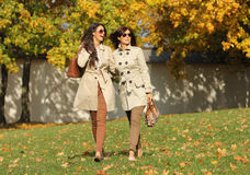 Two cheerful women in the autumn park. Two cheerful girls twins, in the autumn park Royalty Free Stock Images