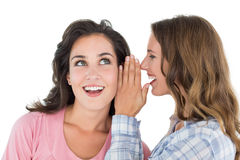 Two cheerful young female friends gossiping Stock Images
