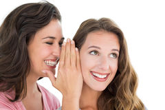 Two cheerful young female friends gossiping Royalty Free Stock Images
