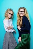 Two cheerful girls royalty free stock image