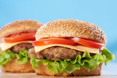 Two cheeseburgers Royalty Free Stock Images