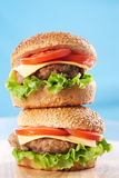 Two cheeseburgers Royalty Free Stock Photos