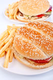 Two cheeseburgers with fries Royalty Free Stock Photo