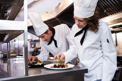 Two chefs garnishing meal on counter Stock Photos
