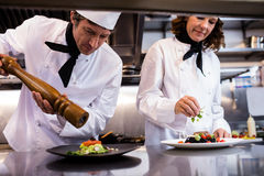 Two chefs garnishing meal on counter Royalty Free Stock Photography