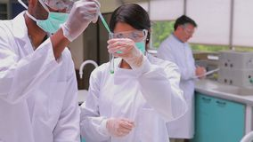 Two chemists experimenting with the green and red liquid in testtube. S in the laboratory stock video