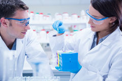 Two chemists wearing safety glasses and working together Stock Image