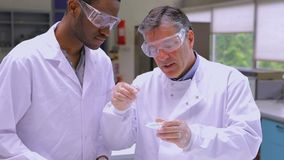 Two chemists working with liquid. In the laboratory stock footage