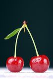 Two cherries Royalty Free Stock Images