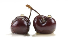 Two Cherries Stock Photography