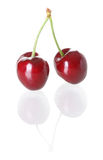 Two cherries. Isolated against white background Royalty Free Stock Images