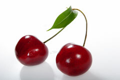 Two cherries on a branch.