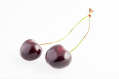 Two cherries isolated on white background Stock Photography