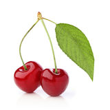 Two cherries with leaf Stock Photography