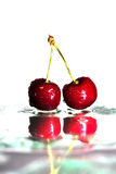 Two cherries on watered glass. And white background stock photo