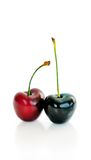 Two cherries on white isolated background Stock Photos