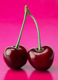 Two cherry Stock Images