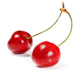Two cherry Stock Image