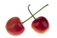 Two cherry Stock Photography