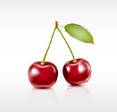 Two cherry berries Royalty Free Stock Image