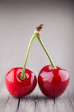 Two cherry Royalty Free Stock Photos