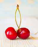 Two cherry on old wood. Stock Image