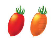Two cherry tomato on white background, vector. Royalty Free Stock Image