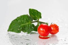 Two Cherry tomatoes with leaves Stock Photo