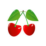 Two Cherry on a white background Stock Photo