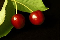 Two cherrys Royalty Free Stock Images