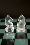 Two chess horses. In game board background, vertical composition stock photography