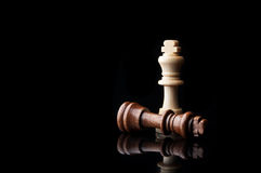 Two chess king Stock Photography