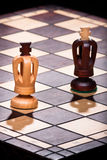 Two chess king Stock Images