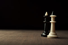Two chess kings Royalty Free Stock Photos