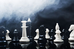 Two chess kings Royalty Free Stock Photography