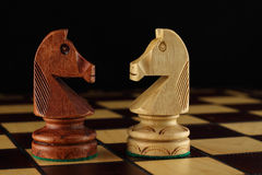 Two chess Knights Stock Image