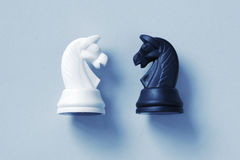 Two of chess knights on a light blue background Royalty Free Stock Photo